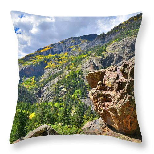 Colorado Throw Pillow featuring the photograph Boulder In Ouray Canyon by Ray Mathis