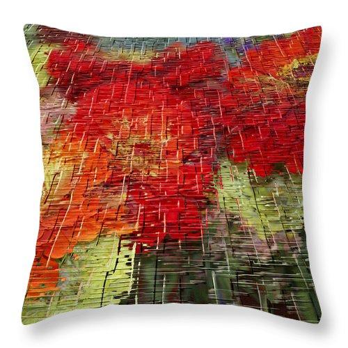 Craquelure Throw Pillow featuring the photograph Bouquet Of Colors by Deborah Benoit