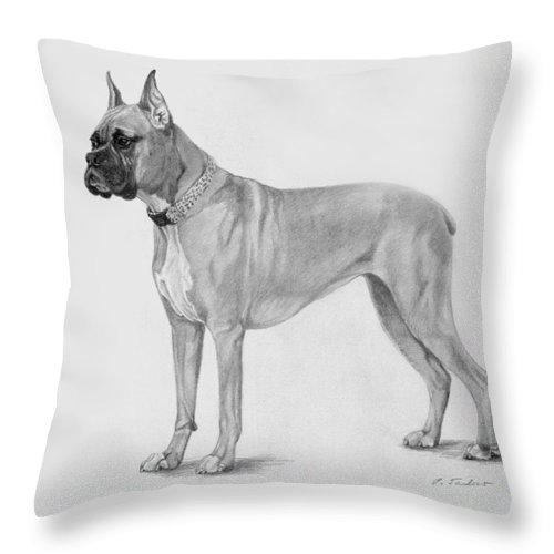 Dog Throw Pillow featuring the drawing Boxer At Attention by Phyllis Tarlow