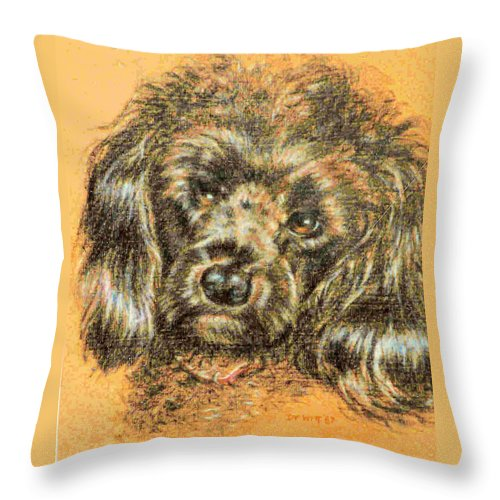 Poodle Throw Pillow featuring the drawing Boy Toy by Dy Witt