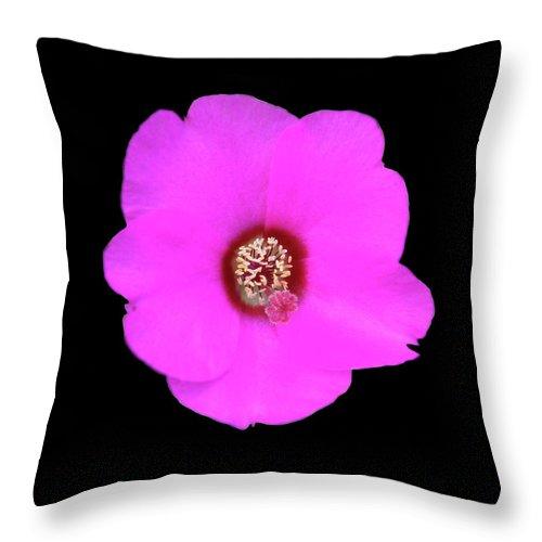 Flowers Throw Pillow featuring the photograph bp8 by Krisjan Krafchak
