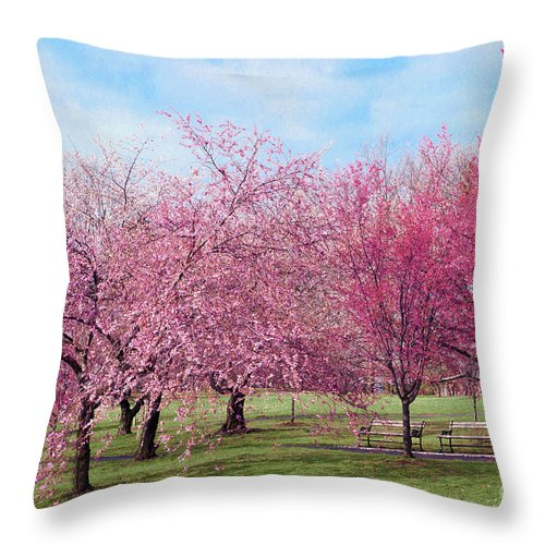 Branch Brook Park Cherry Blossoms 2013 Throw Pillow featuring the photograph Branch Brook Cherry Blossoms by Regina Geoghan