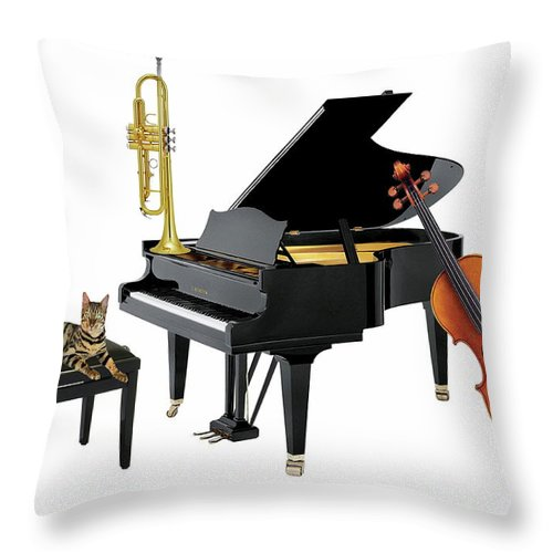 Music Throw Pillow featuring the photograph Break by Manfred Lutzius