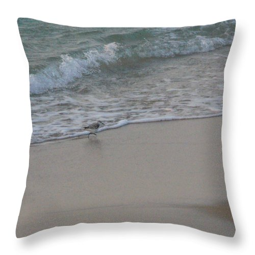 Surf Throw Pillow featuring the photograph Breakfast At The Shore by Peggy King