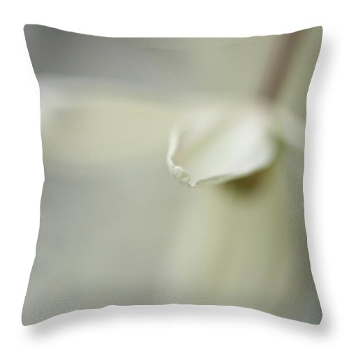 Connie Handscomb Throw Pillow featuring the photograph Breeze by Connie Handscomb