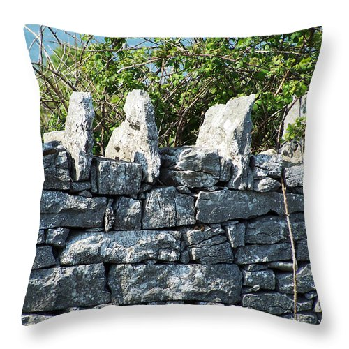 Irish Throw Pillow featuring the photograph Briars And Stones New Quay Ireland County Clare by Teresa Mucha