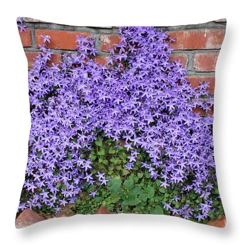 Blue Flowers Throw Pillow featuring the photograph Brick Wall With Blue Flowers by Carol Groenen