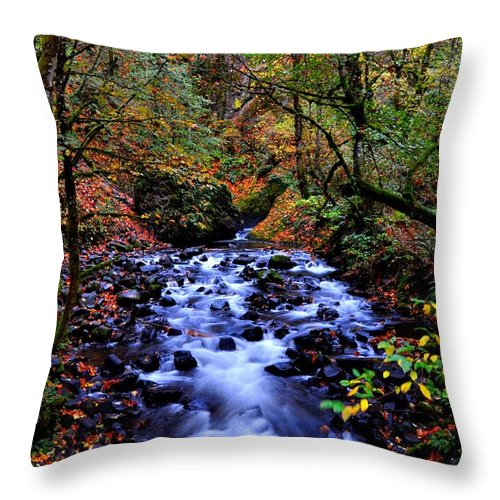 Stream Throw Pillow featuring the photograph Bridal Veil Creek by Noah Cole