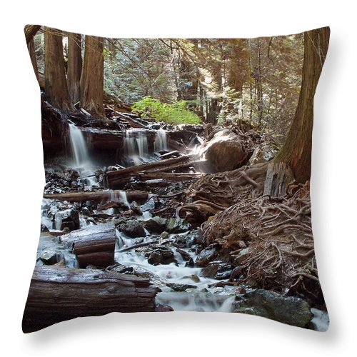 British Columbia Throw Pillow featuring the photograph Bridal Veil Falls - British Columbia by Linda McRae