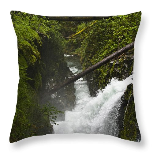 Bridge Throw Pillow featuring the photograph Bridge Over Water by Chad Davis