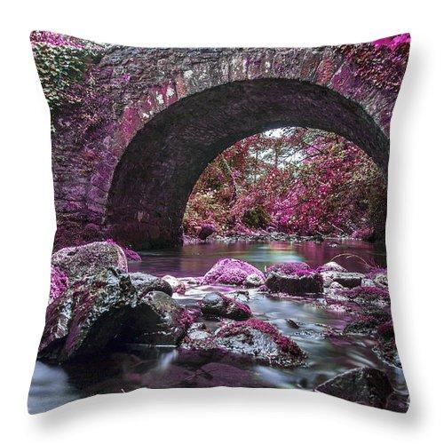 Bridge Throw Pillow featuring the photograph Bridge River by Sebastien Coell