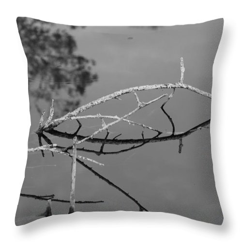 Black And White Throw Pillow featuring the photograph Bridges In Wood by Rob Hans