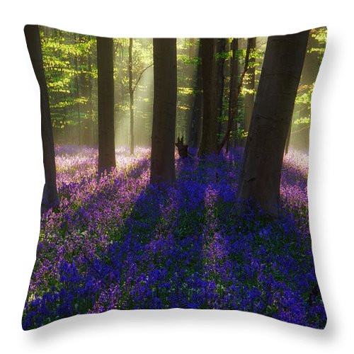 Forest Throw Pillow featuring the photograph Bright Magic by Martin Podt