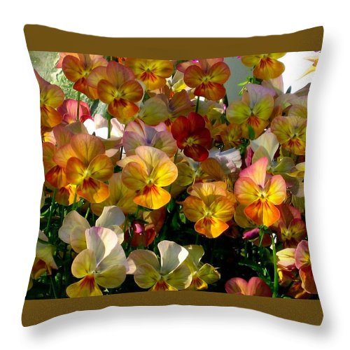 Pansy Throw Pillow featuring the photograph Bright Shining Faces by Marla McFall