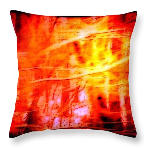 Nature Throw Pillow featuring the photograph Brightness Hope And Glory by Debra Lynch
