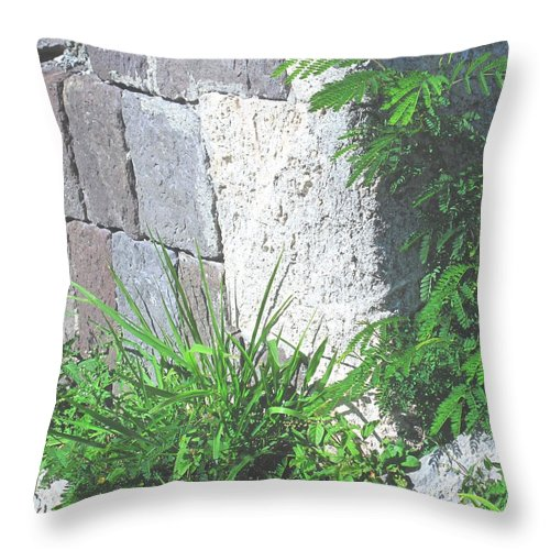 Brimstone Throw Pillow featuring the photograph Brimstone Wall by Ian MacDonald