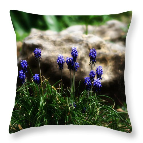 Flowers Throw Pillow featuring the photograph Bring on the purple by Toni Hopper
