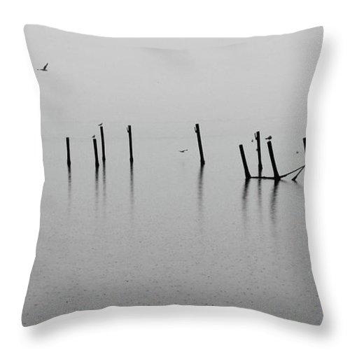 Dock Throw Pillow featuring the photograph Broken Dock In The Rain by Francesa Miller