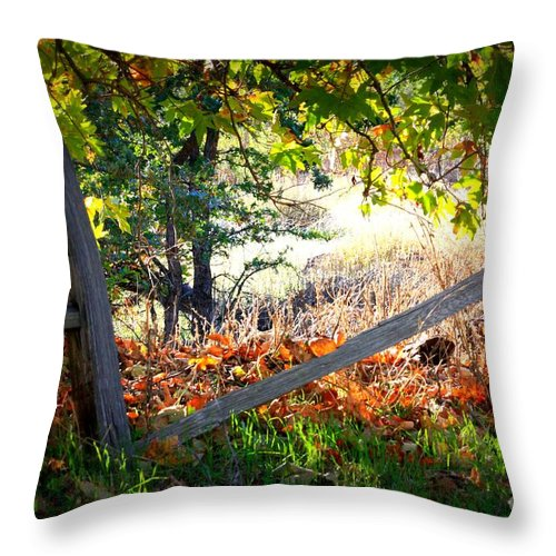 Autumn Throw Pillow featuring the photograph Broken Fence In Sycamore Park by Carol Groenen
