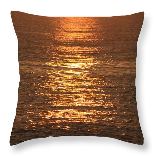 Ocean Throw Pillow featuring the photograph Bronze Reflections by Nadine Rippelmeyer