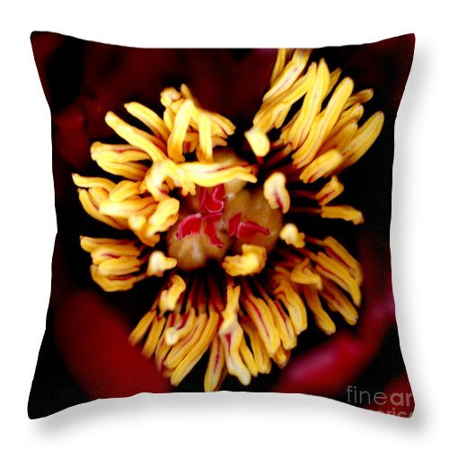 Wine Throw Pillow featuring the photograph Brooding I by Valerie Fuqua