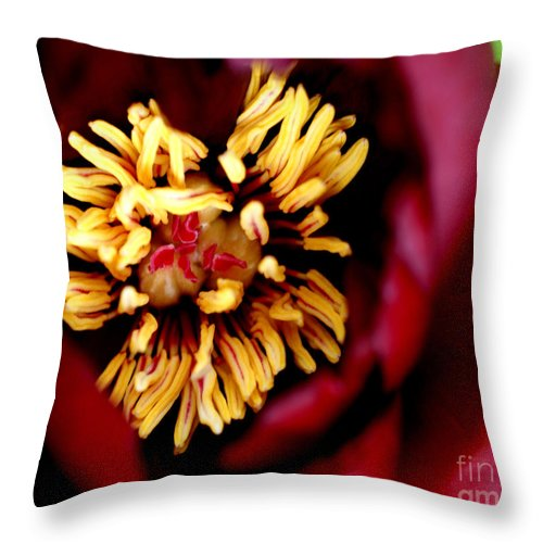 Red Throw Pillow featuring the photograph Brooding II by Valerie Fuqua