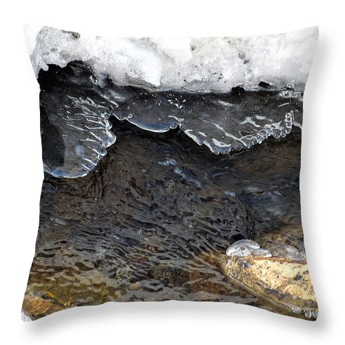 Macro Throw Pillow featuring the photograph Brook Ice Macro by William Tasker