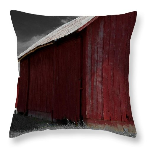 Farm Throw Pillow featuring the photograph Brothers In Red by Paulette B Wright