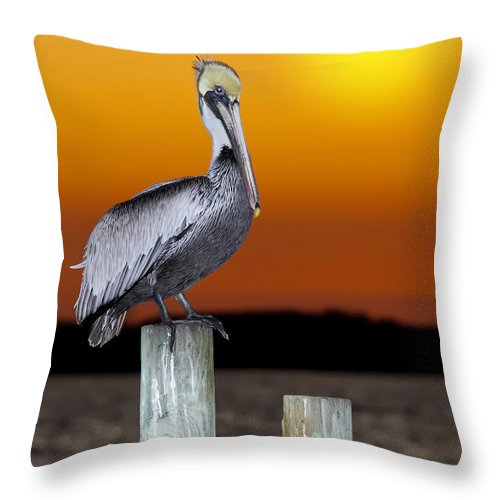 Brown Pelican Throw Pillow featuring the photograph Brown Pelican by Janet Fikar