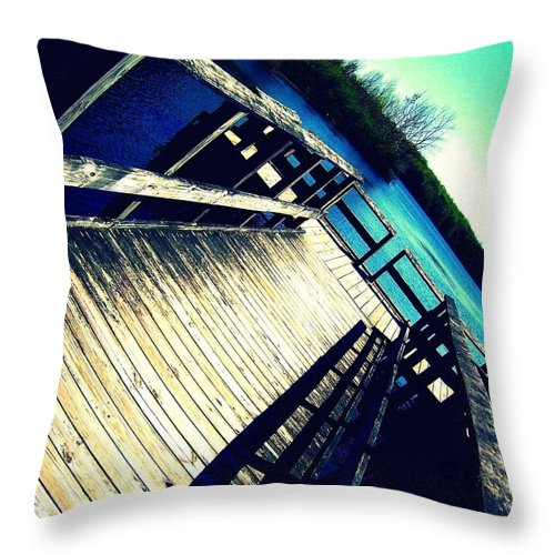 Water Throw Pillow featuring the photograph Brownstown Forestry by Tatiana Gorbett