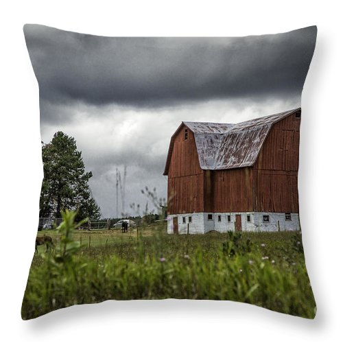 Michigan Throw Pillow featuring the photograph Brutus Barn 2 by Timothy Hacker