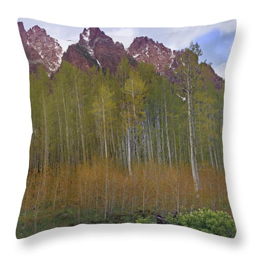 Mountain Throw Pillow featuring the photograph Buckskin Mtn And Friends by Heather Coen