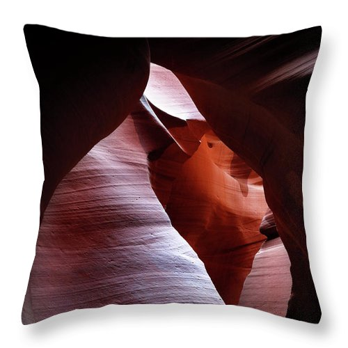 Bud Throw Pillow featuring the photograph Bud by Nicholas Blackwell