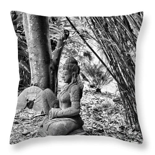 Landscape Throw Pillow featuring the photograph Buddha Black White Liberia Parish by Chuck Kuhn