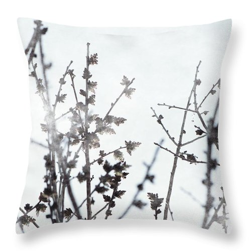 Xenon Blue Throw Pillow featuring the photograph Budding Tree in Xenon Blue Misty Morning by Colleen Cornelius