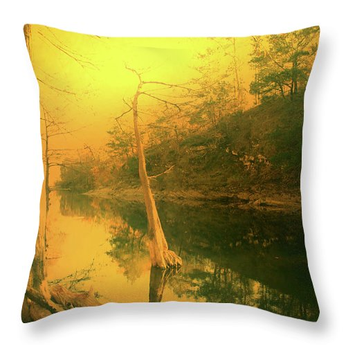 Gold Throw Pillow featuring the photograph Buffalo River In Gold by Nina Fosdick