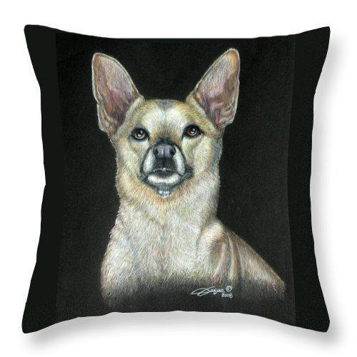 Fuqua - Artwork Throw Pillow featuring the drawing Buffy by Beverly Fuqua