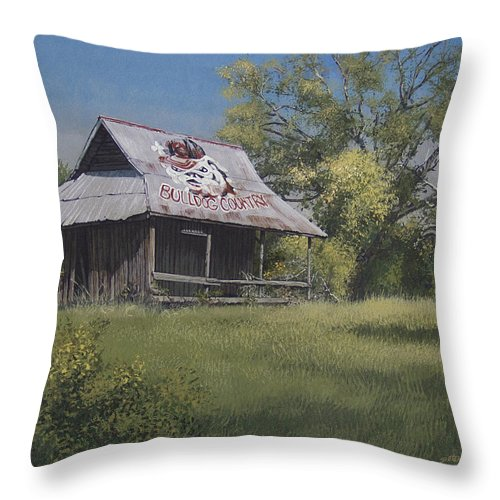 Landscape Throw Pillow featuring the painting Bulldog Country by Peter Muzyka