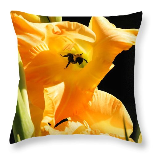 Bumble Bee Throw Pillow featuring the photograph Bumblebee Yoga by Michelle DiGuardi