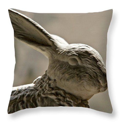 Bunny Throw Pillow featuring the photograph Bunny by Christopher Holmes