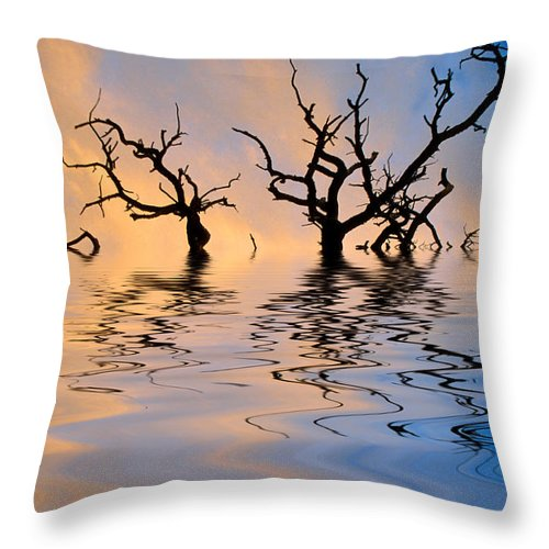 Original Art Throw Pillow featuring the photograph Slowly Sinking by Jerry McElroy