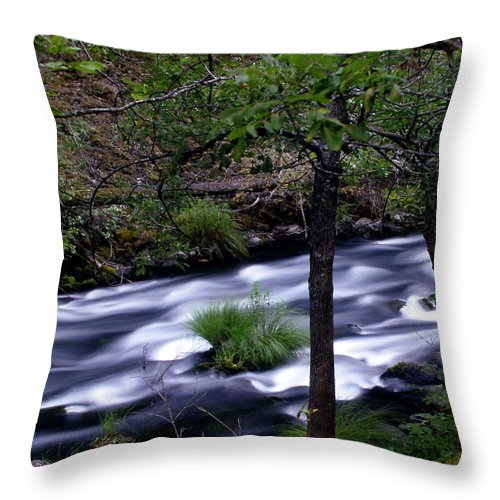 River Throw Pillow featuring the photograph Burney Creek by Peter Piatt