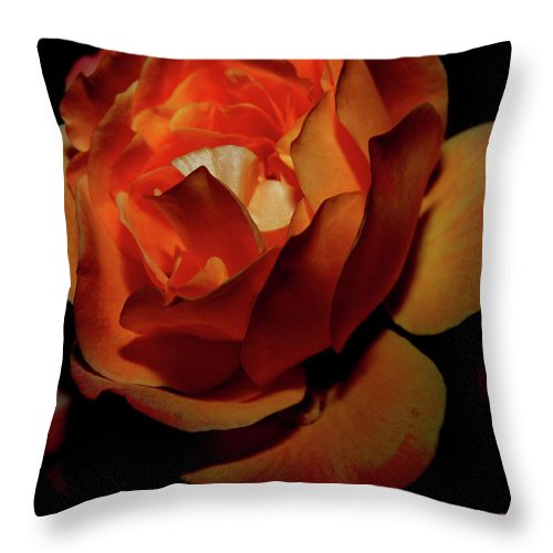 Rose Throw Pillow featuring the digital art Burning Ember Rose by DigiArt Diaries by Vicky B Fuller