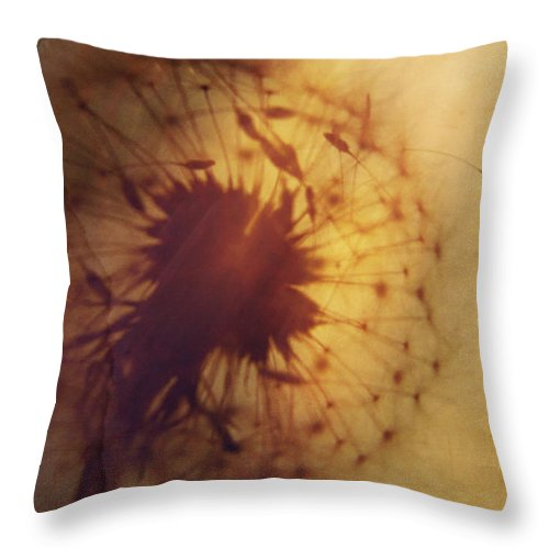 Photo Throw Pillow featuring the photograph Burning Wish by Amy Tyler