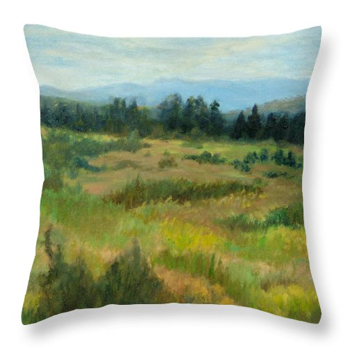 Landscape Throw Pillow featuring the painting Burnt Mesa Trail by Phyllis Tarlow