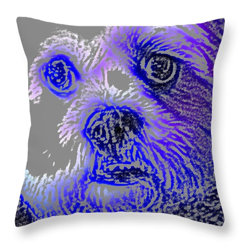 Dog Throw Pillow featuring the photograph Buster Photo by Wayne Potrafka