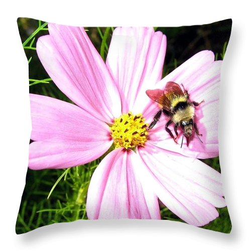 Bee Throw Pillow featuring the photograph Busy Bee by Will Borden