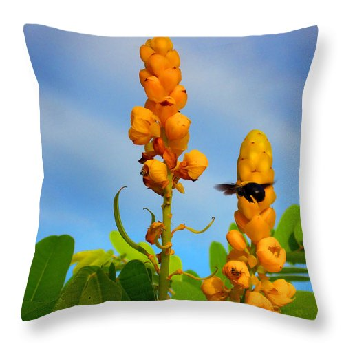 Bubble Bee Throw Pillow featuring the photograph Busy Bees by Farah Faizal