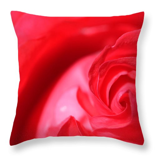 Rose Throw Pillow featuring the photograph Butler Rose by Michael McGowan