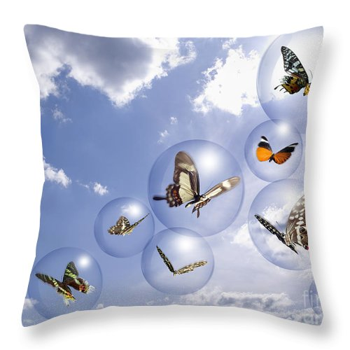 Insects Throw Pillow featuring the photograph Butterflies And Bubbles by Tony Cordoza
